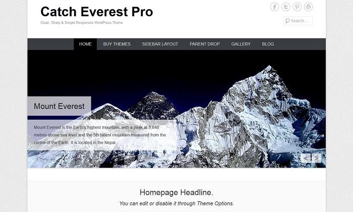 Catch Everest-Wordpress